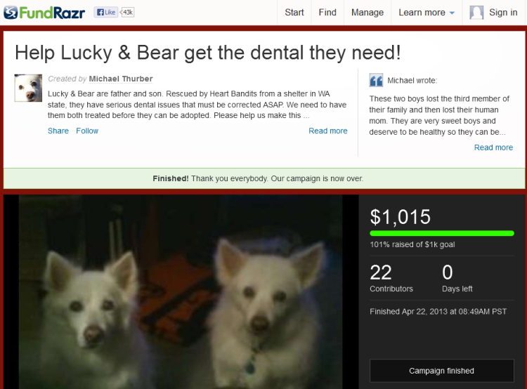 Help Lucky & Bear get the dental they need! by Michael Thurber 2013-05-05 00-45-24