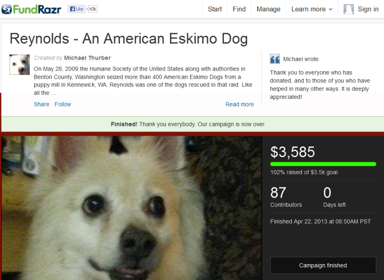 Reynolds - An American Eskimo Dog by Michael Thurber 2013-05-05 00-48-40