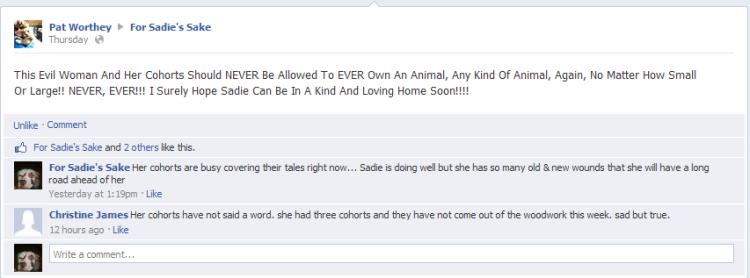 (1) For Sadie's Sake 2013-05-18 16-51-34