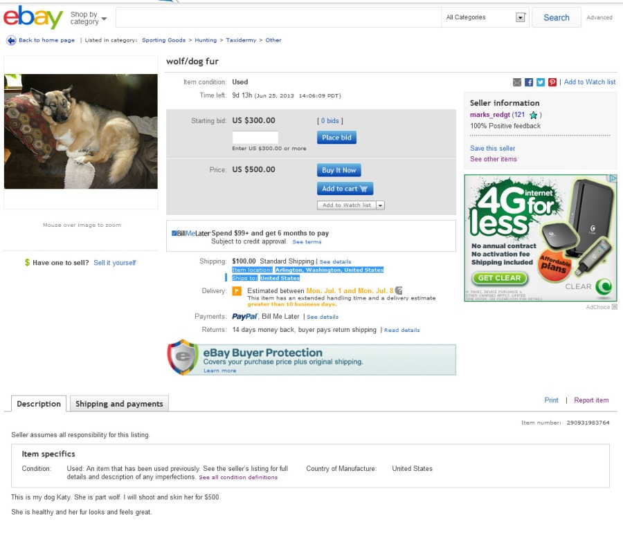 Wolf Dog Fur  eBay 2013-06-16 01-06-20